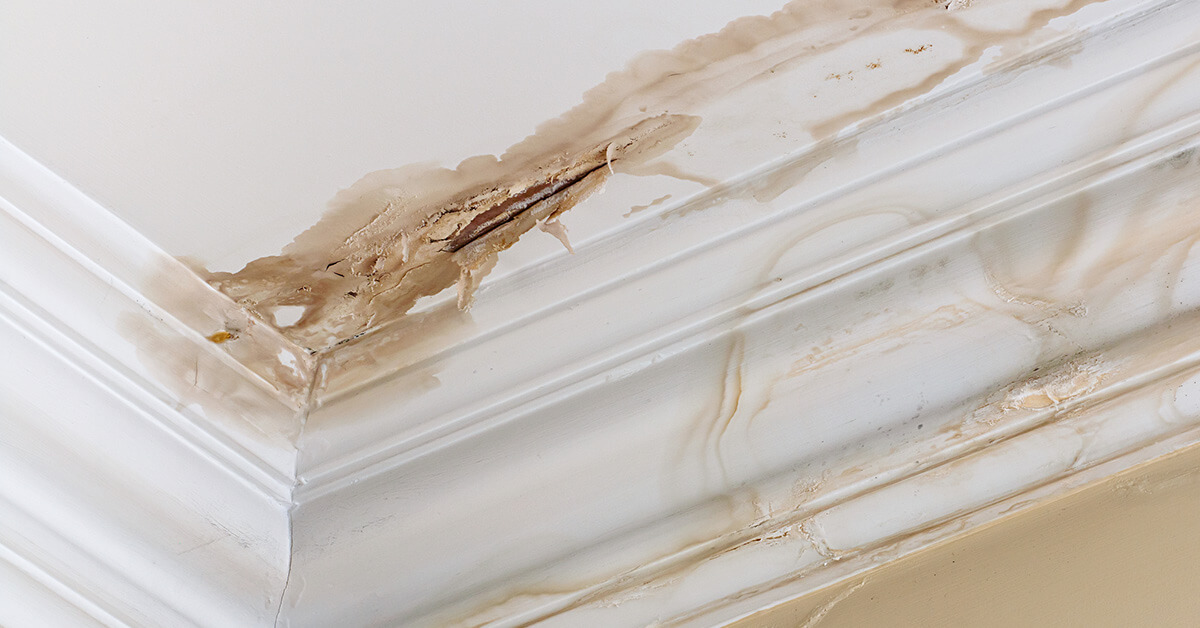 Certified Water Damage Mitigation in Brentwood, TN
