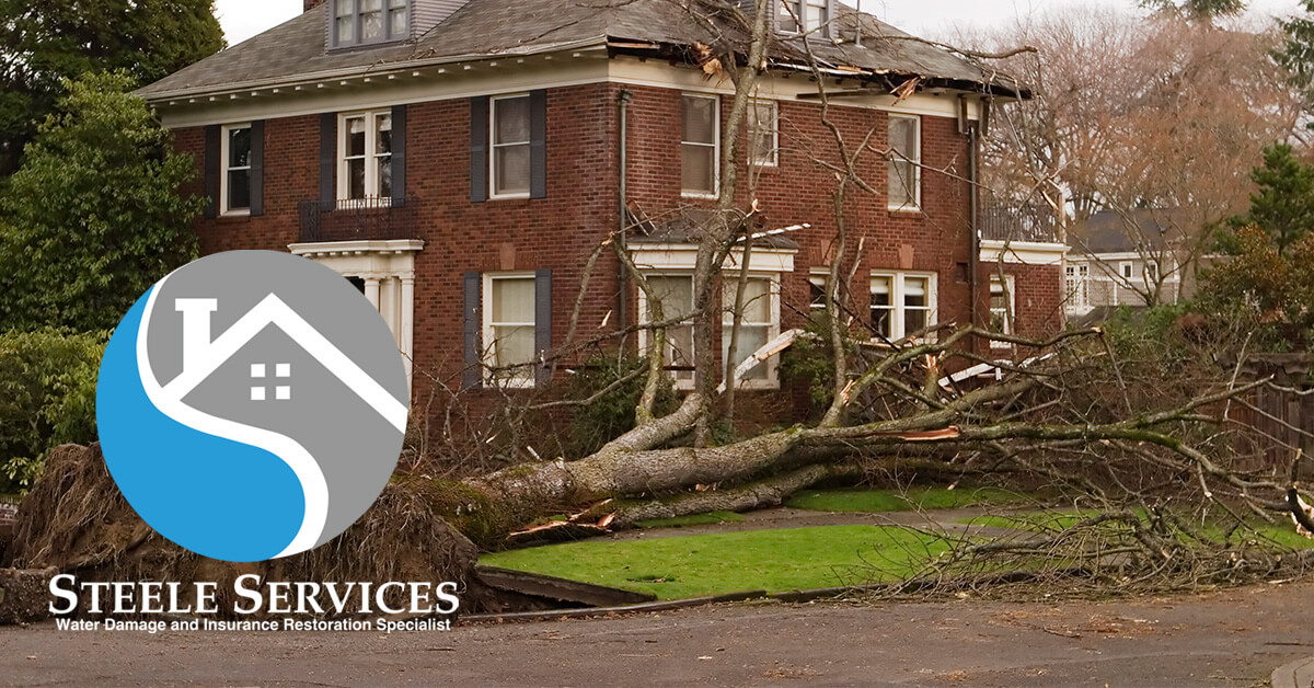 Certified Storm Damage Restoration in Forest Hills, TN