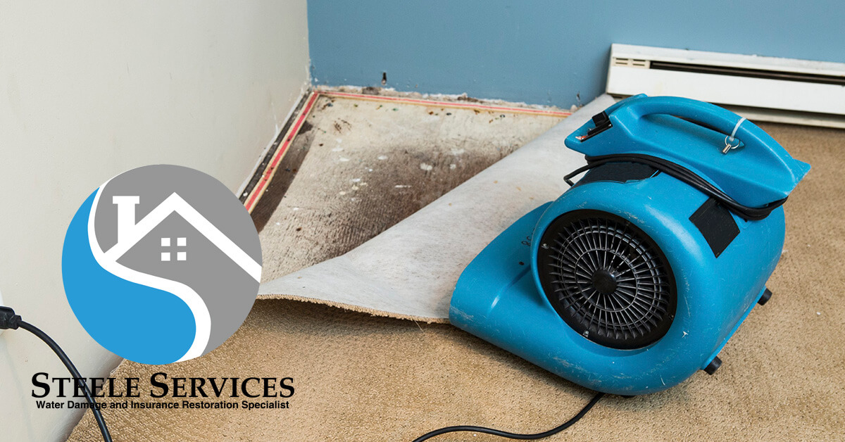 Certified Water Damage Cleanup in Belle Meade, TN