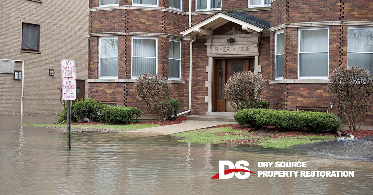 Professional Water Damage Mitigation in Belleville, WI
