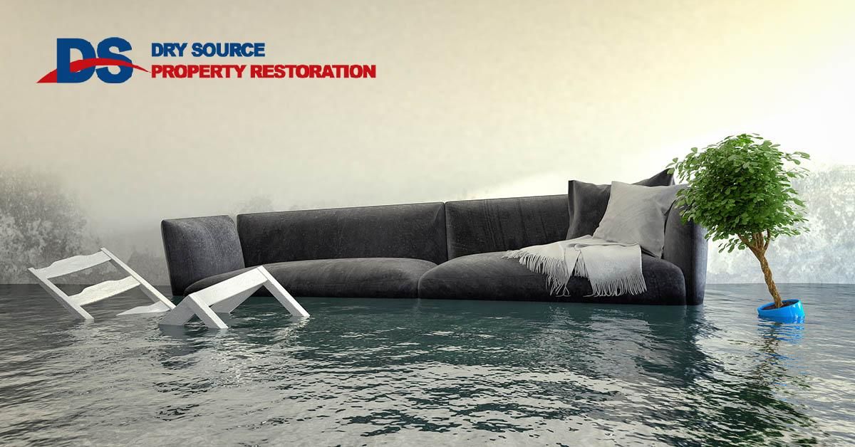 Professional Water Damage Cleanup in Springfield, WI
