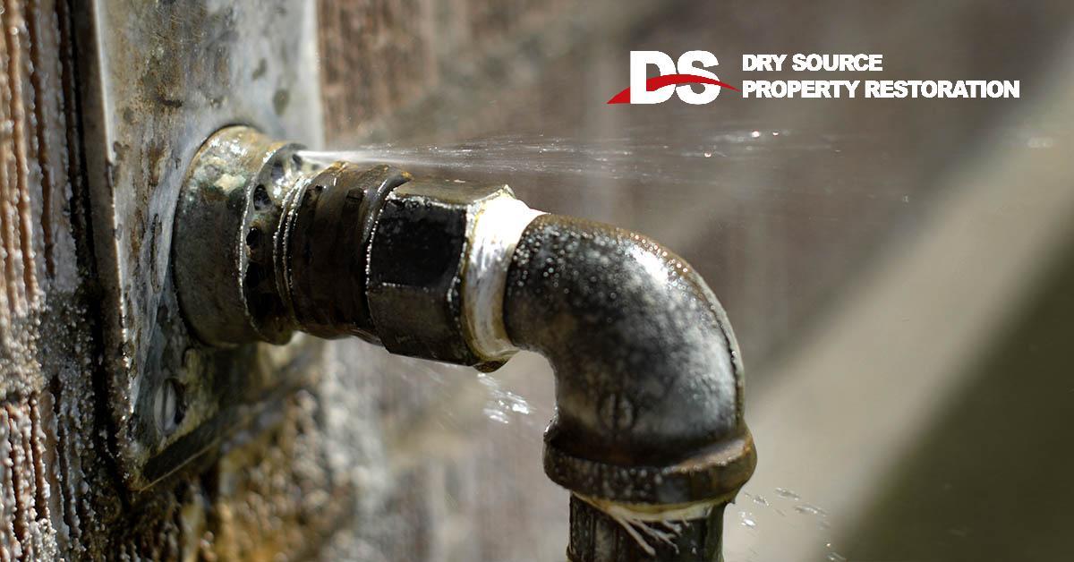 Certified Water Damage Repair in Primrose, WI