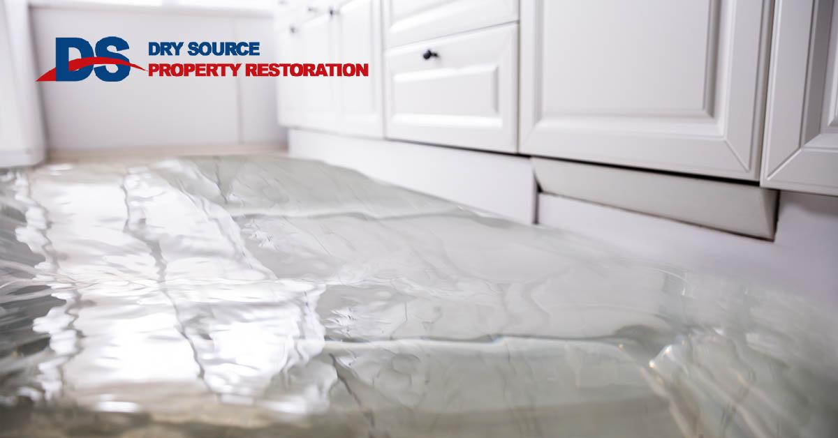 Professional Water Damage Cleanup in Rockdale, WI