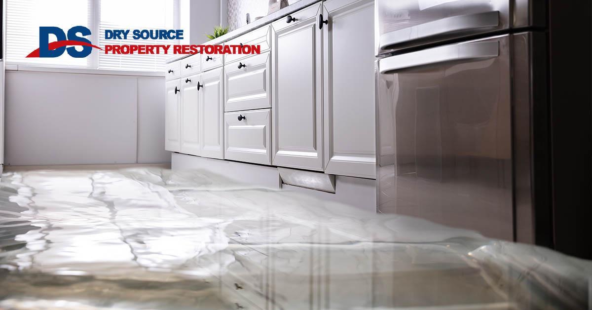 Certified Water Damage Remediation in Brooklyn, WI