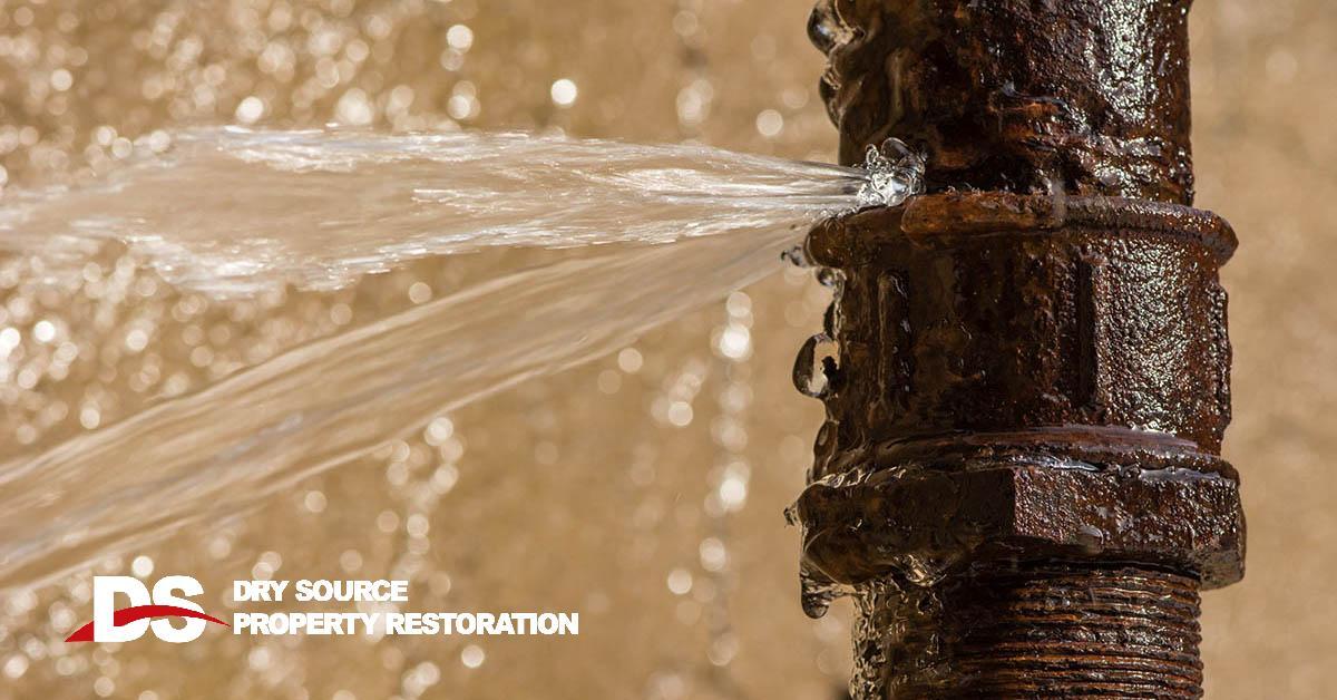 Professional Water Damage Restoration in Roxbury, WI