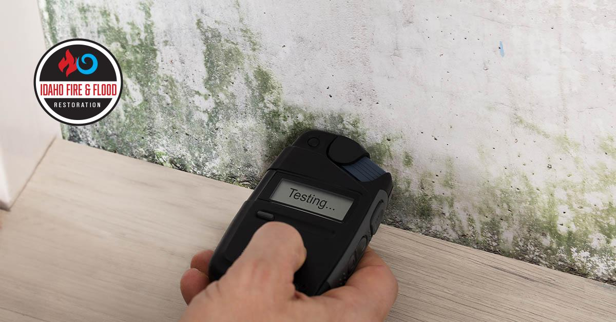 IICRC Certified Mold Removal Contractors in Idaho Falls, ID