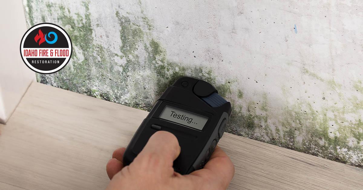 IICRC Certified Mold Testing in Meridian, ID