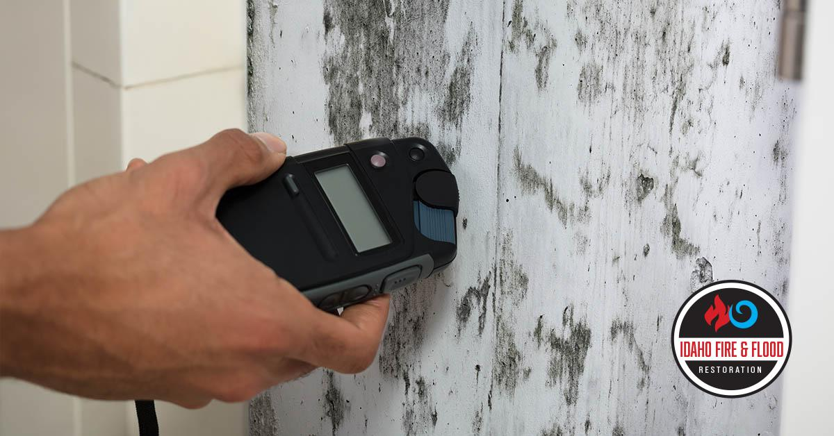 IICRC Certified Mold Inspections in Idaho Falls, ID