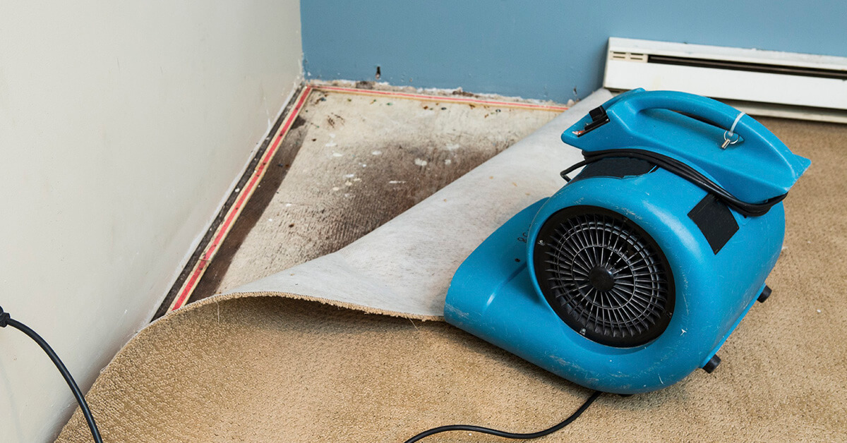 Certified Water Damage Cleanup in Eagle, ID