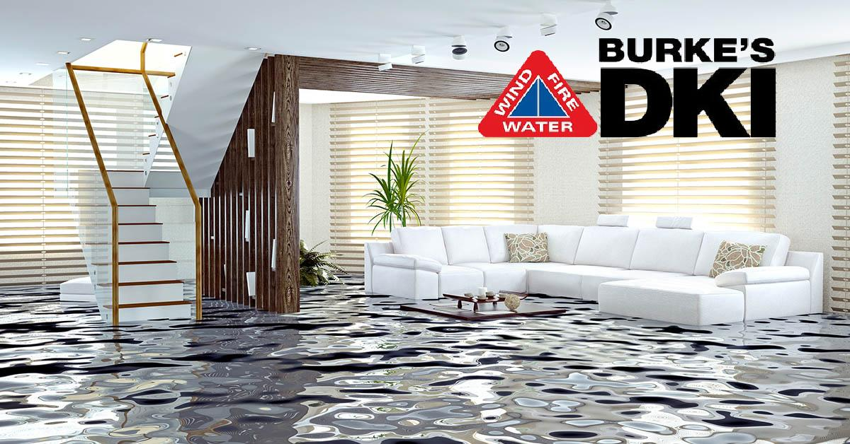 Professional Water Damage Repair in Hayden, ID