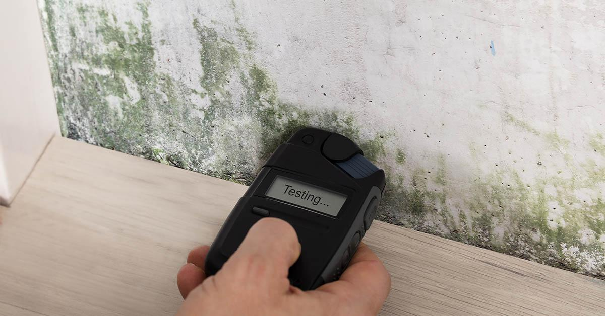 Certified Mold Testing in Wallace, ID