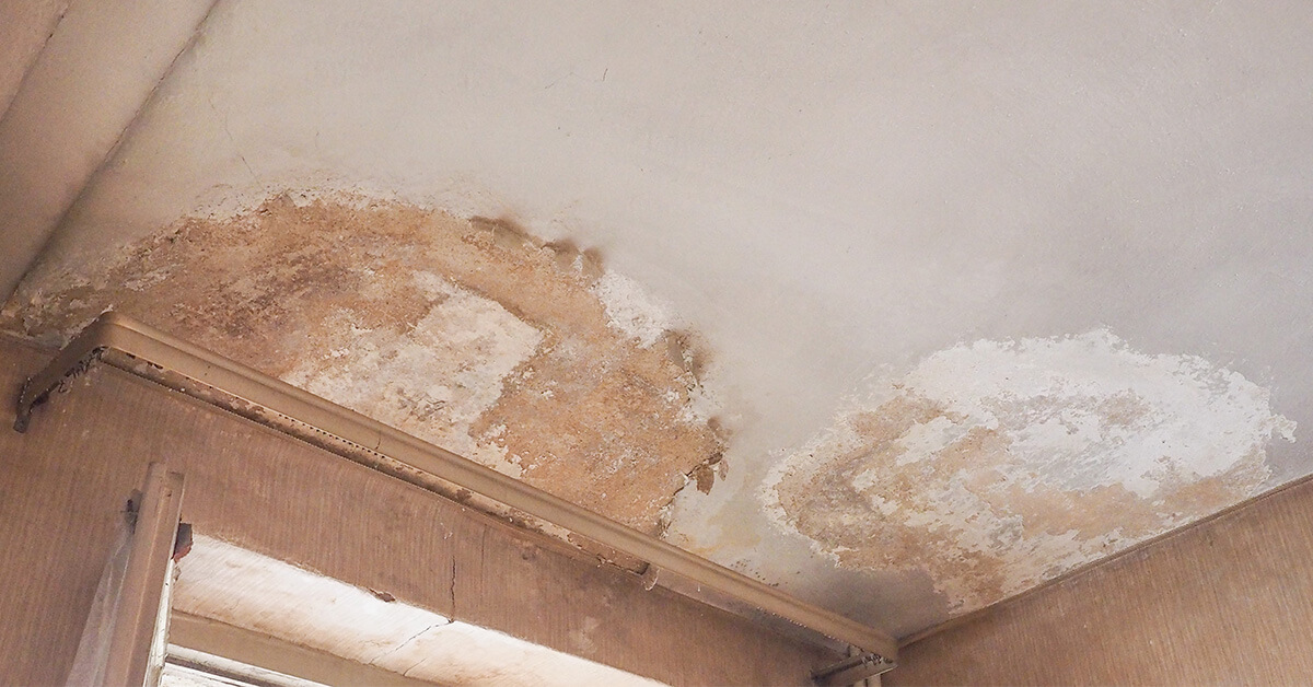 Professional Water Damage Mitigation in Sand Point, ID