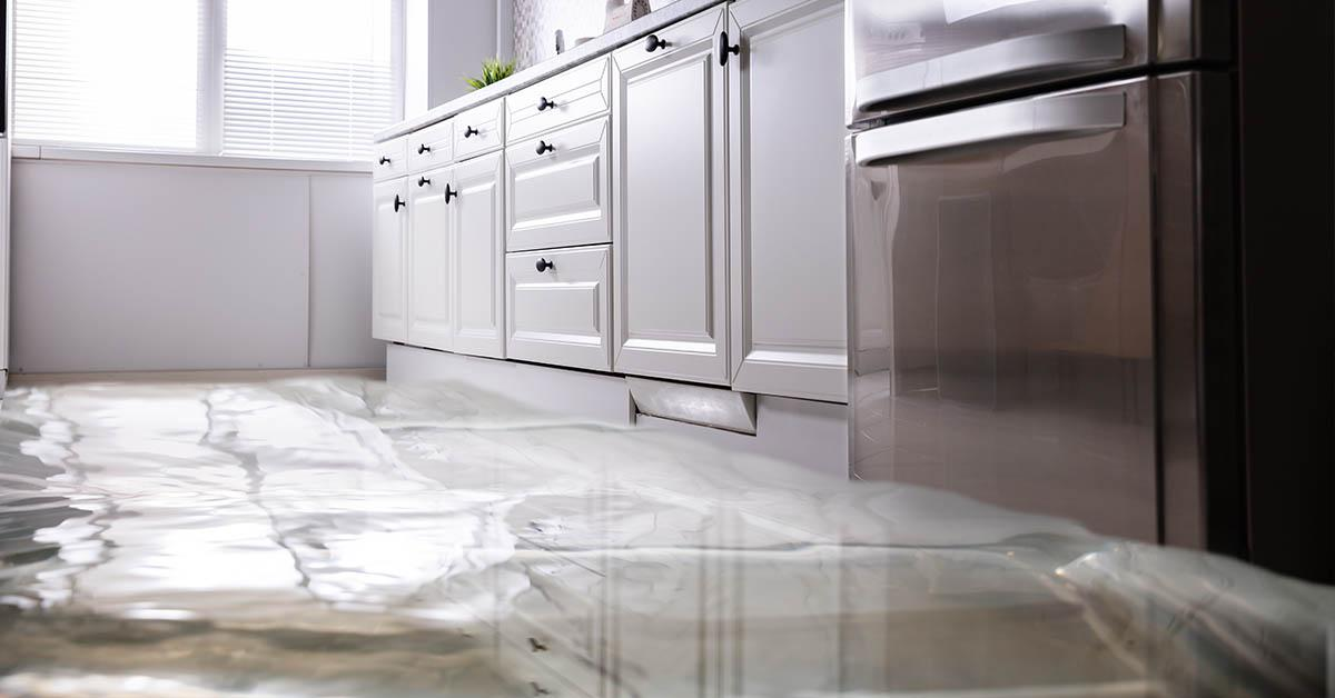 Professional Water Damage Cleanup in Wallace, ID