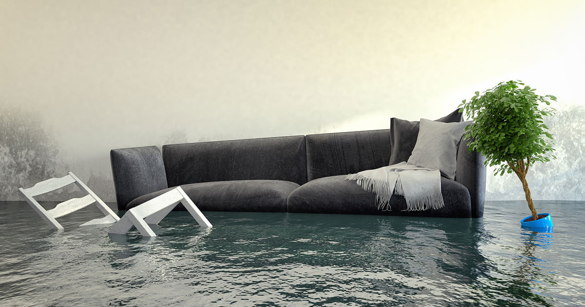 Professional Water Damage Mitigation in Mary Esther, FL