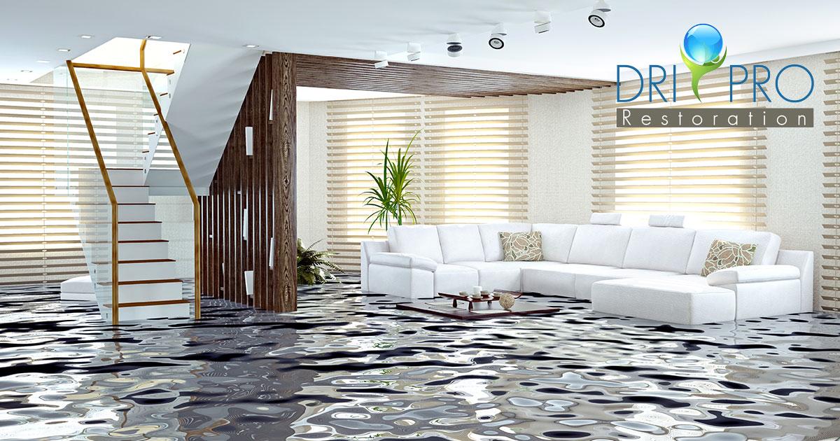 Certified Flood Damage Restoration in Gulf Breeze, FL