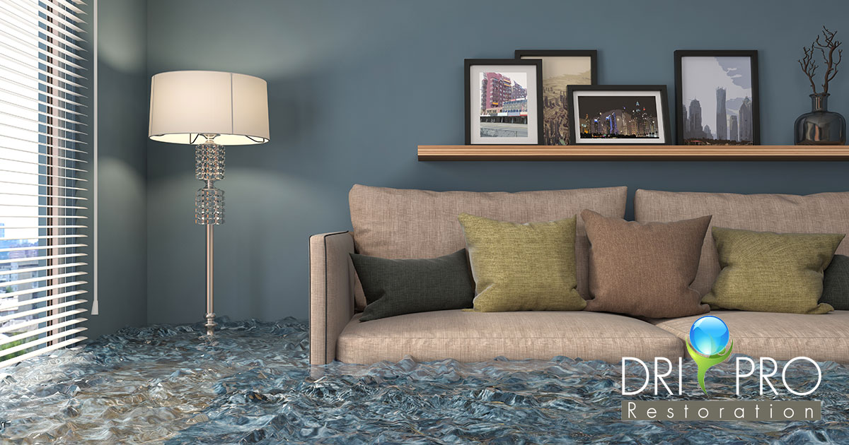Professional Flood Damage Mitigation in Seaside, FL