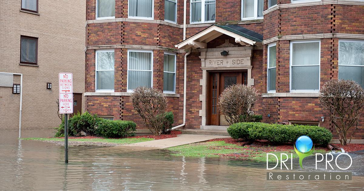 Professional Flood Damage Restoration in Choctaw, FL