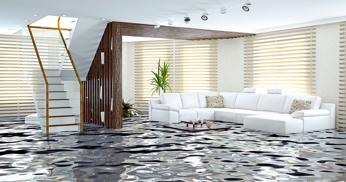 Professional Water Removal in Niceville, FL