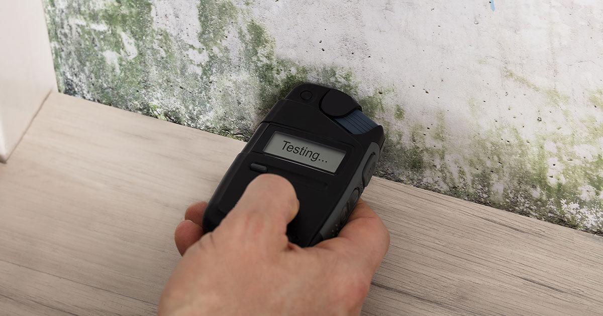 Certified Mold Remediation in Seaside, FL