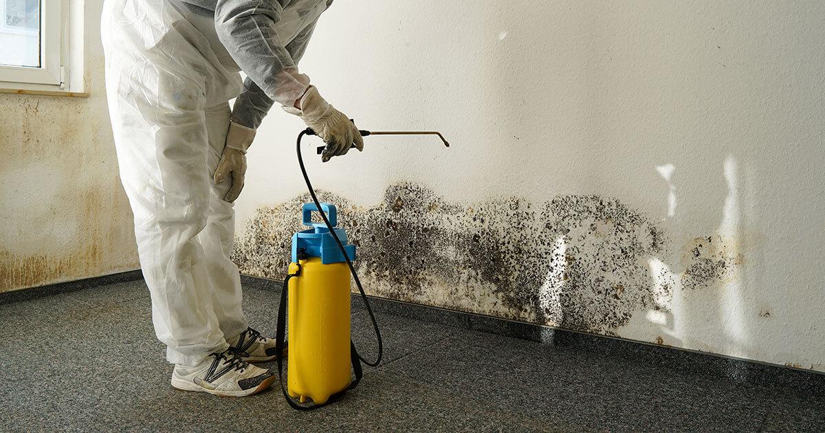 Certified Mold Remediation in Freeport, FL