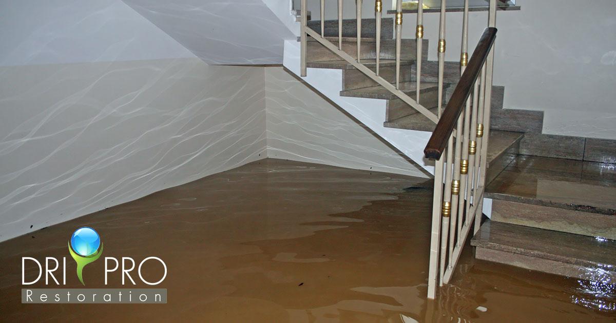 Certified Flood Damage Cleanup in Freeport, FL