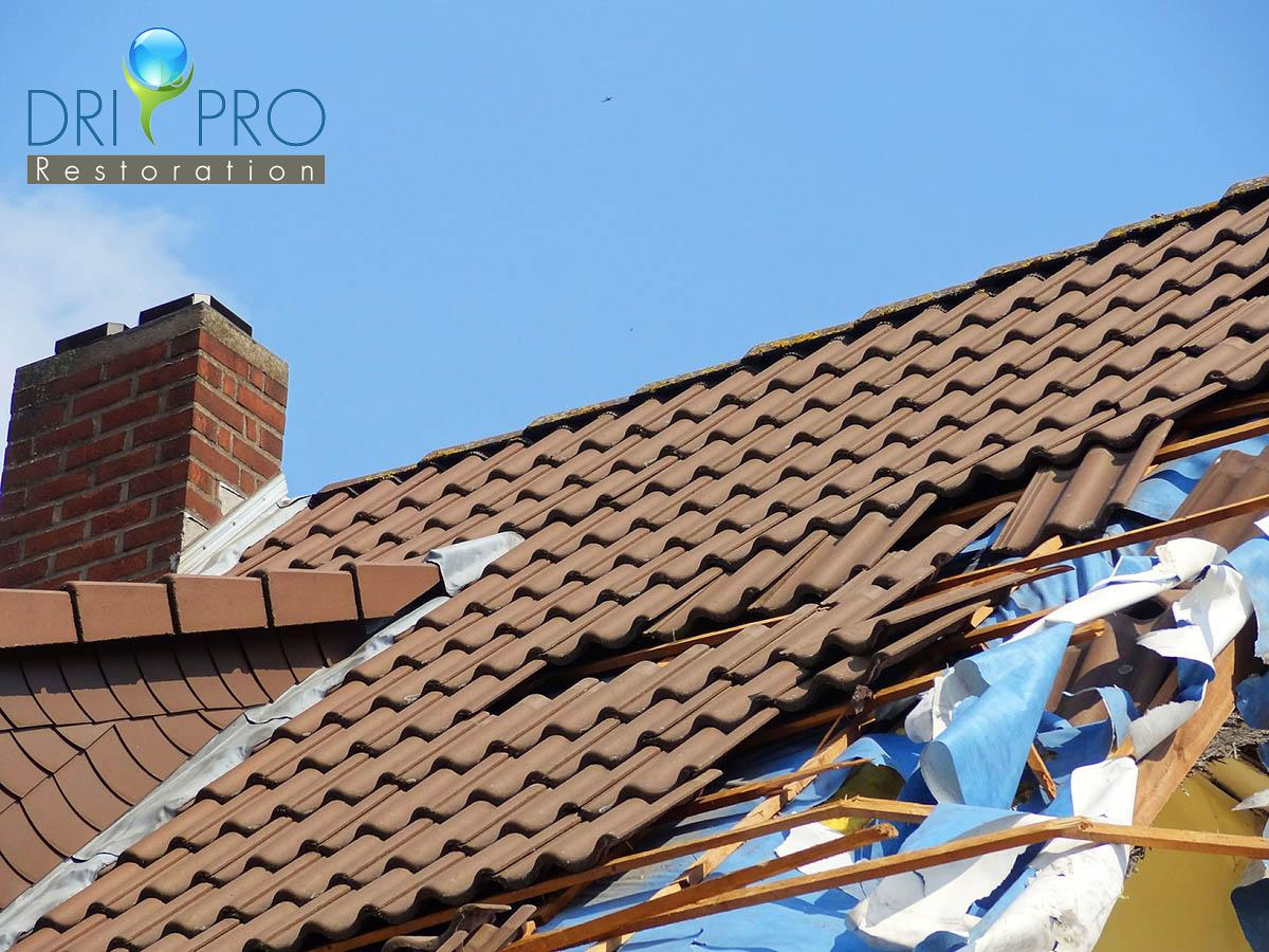 Certified Storm Damage Cleanup in Fort Walton Beach, FL