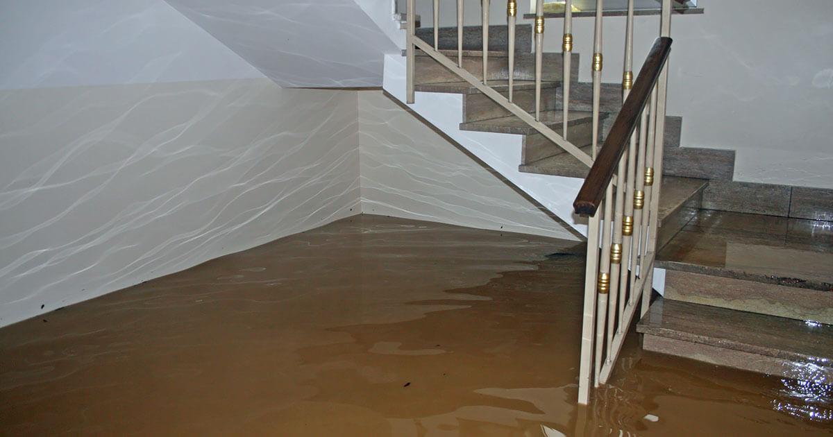 Certified Water Damage Mitigation in Walton County, FL
