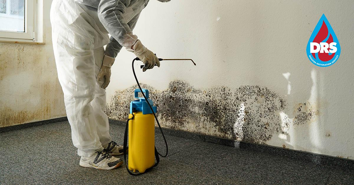 IICRC Certified Mold Mitigation Company in Gypsum, CO