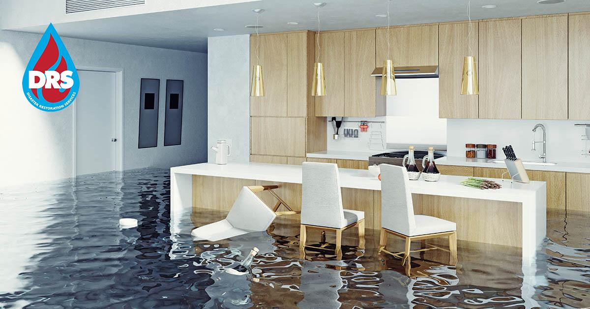 Certified Water Damage Cleanup in Avon, CO
