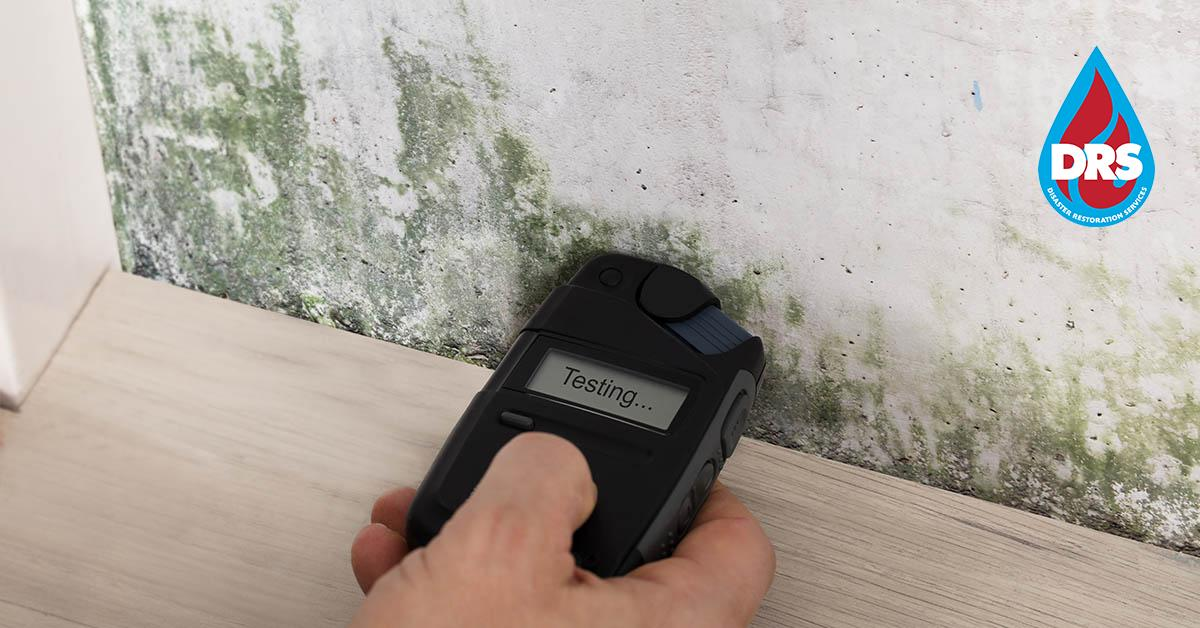 IICRC Certified Mold Remediation Contractors in Avon, CO