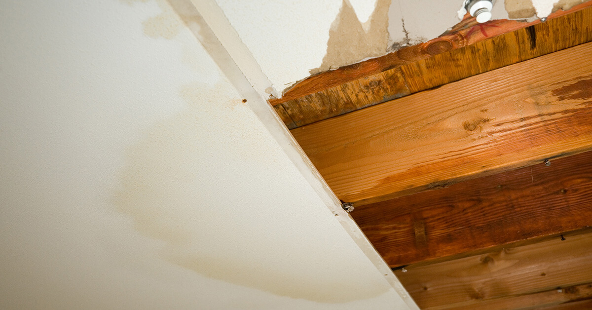 Professional Water Damage Cleanup in Cherry Hill, NJ