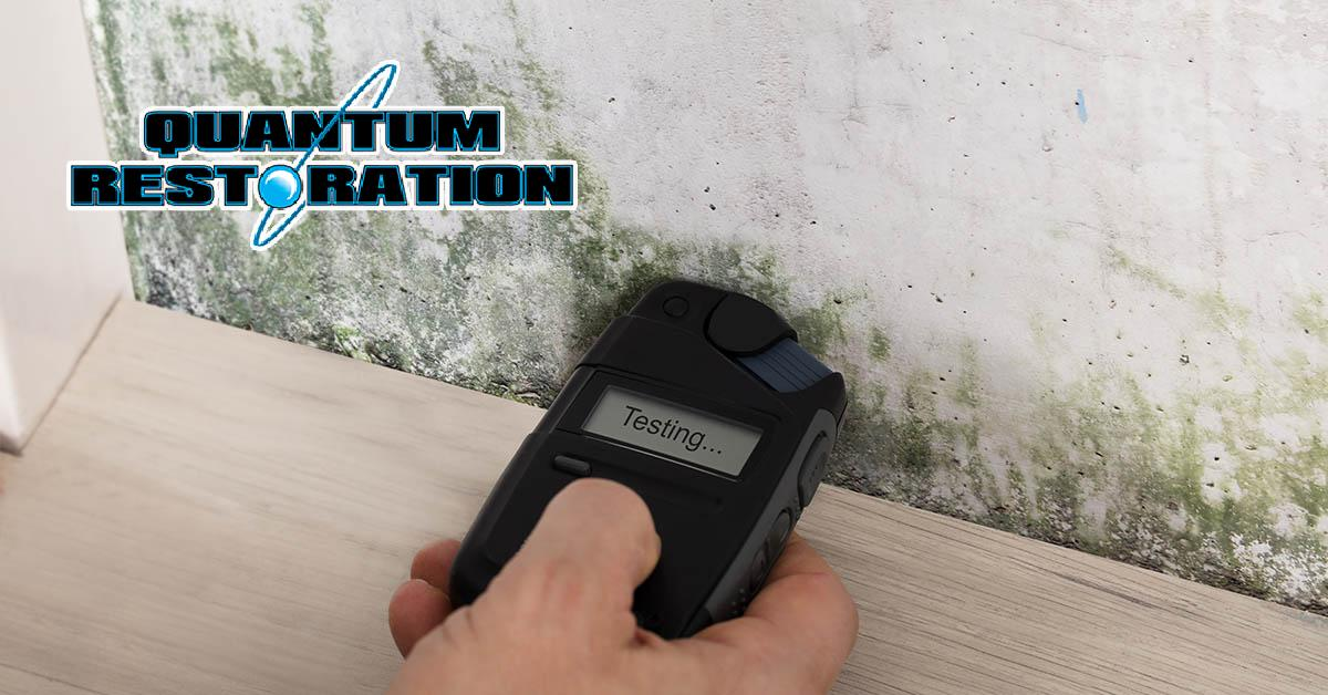 Certified Mold Abatement Company in Collingswood, NJ