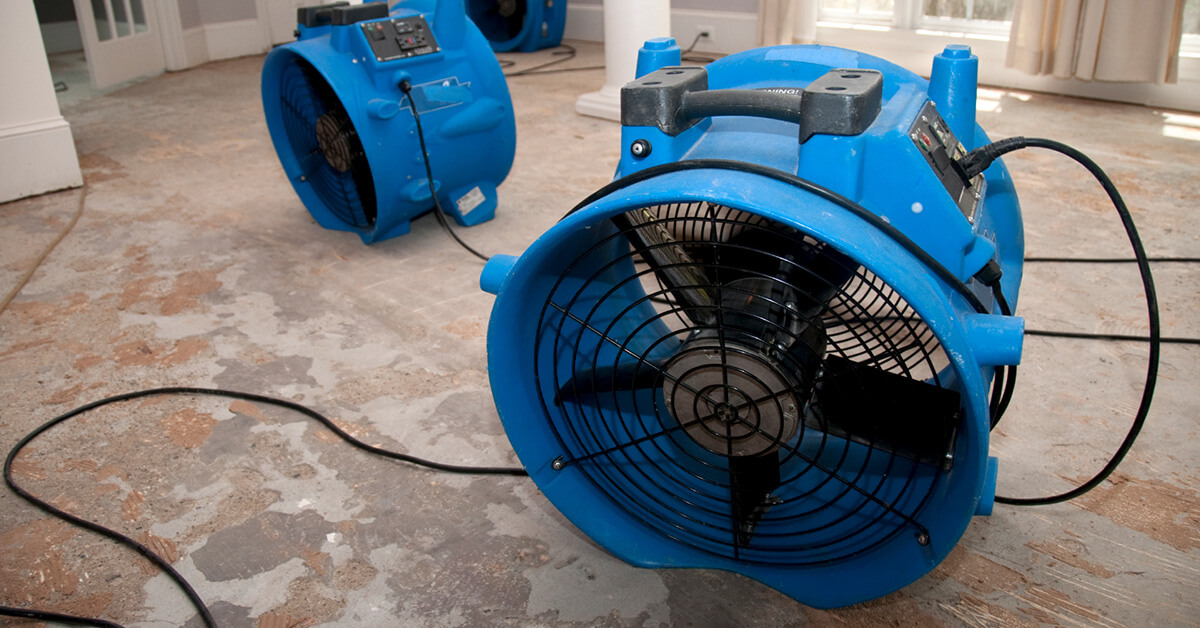 Professional Water Removal in Orlando, FL