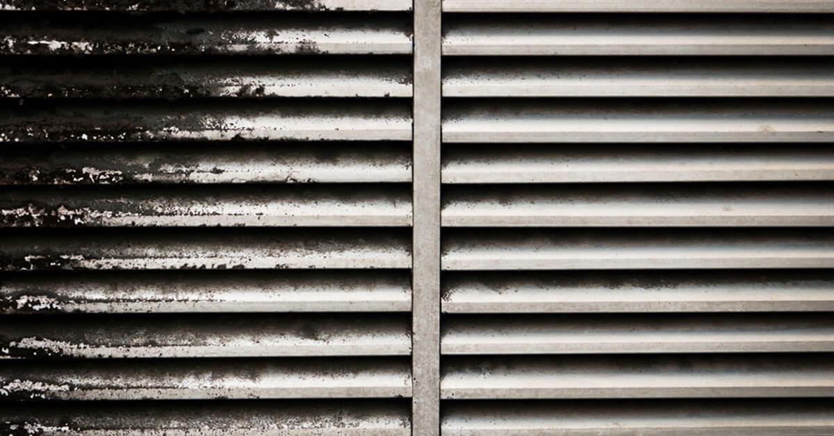 Professional Mold Mitigation in Windermere, FL