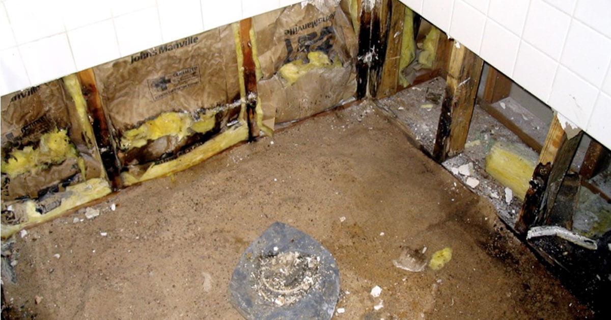 Professional Mold Remediation in Camden, NJ