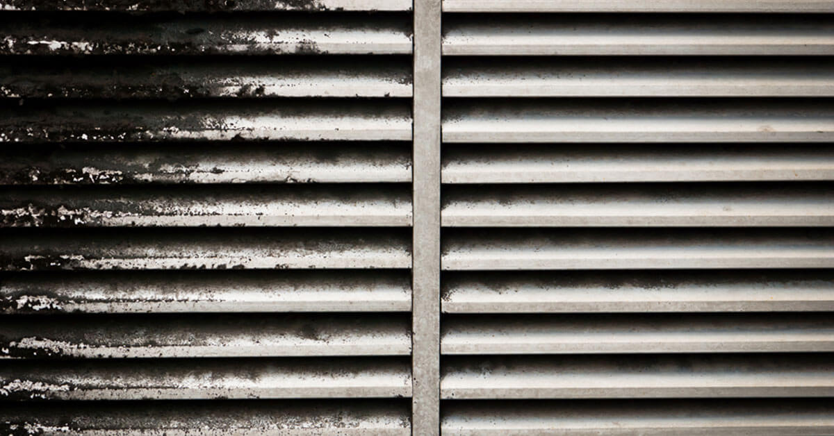 Professional Mold Mitigation in Orlando, FL