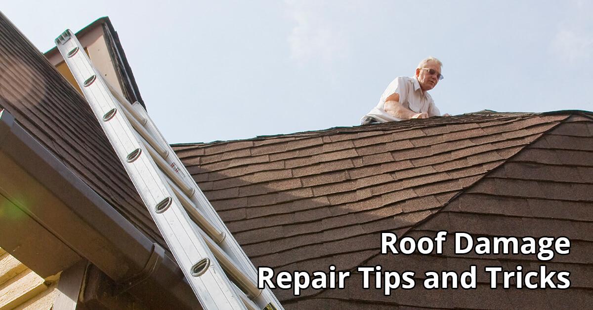 Roof Damage Repair Tips in Hartselle, AL