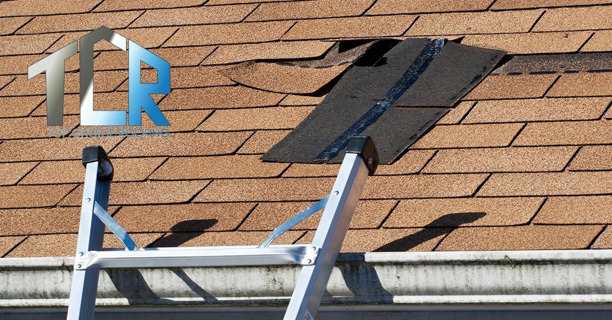 Professional Roof Repair in Baileyton, AL