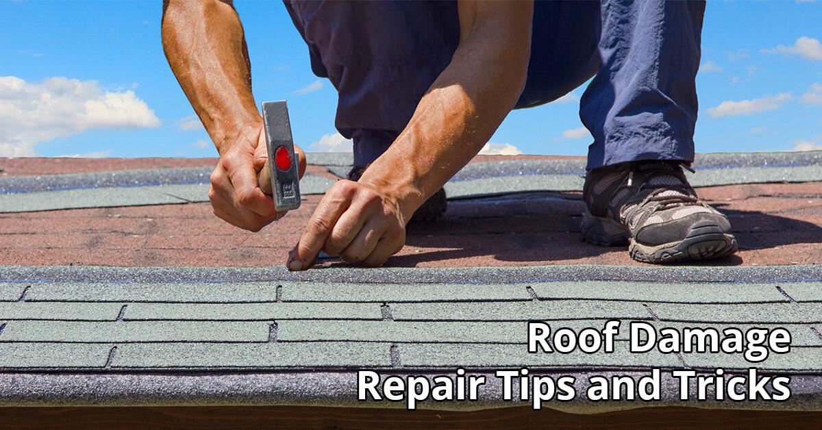 Roof Damage Repair Tips in Crane Hill, AL