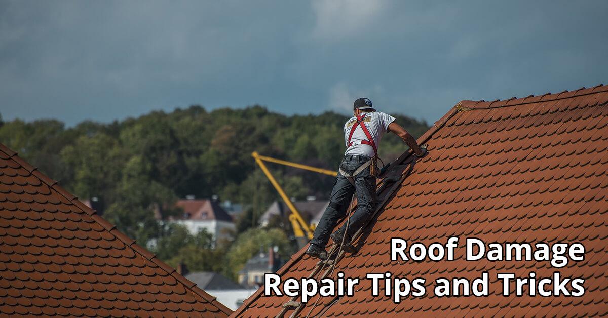Roof Damage Repair Tips in Holly Pond, AL