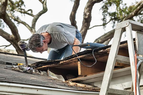 Professional Roof Damage Repair in Falkville, AL